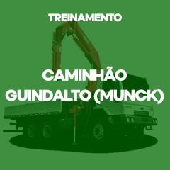 Caminhão Guindauto (Munck)